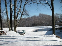 Snow In Ring